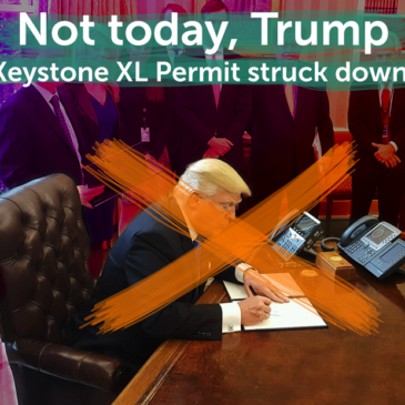 Federal Judge Throws Out Trump's 'Presidential Permit' for Keystone XL Pipeline