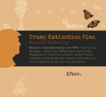 Save Monarchs and the Endangered Species Act