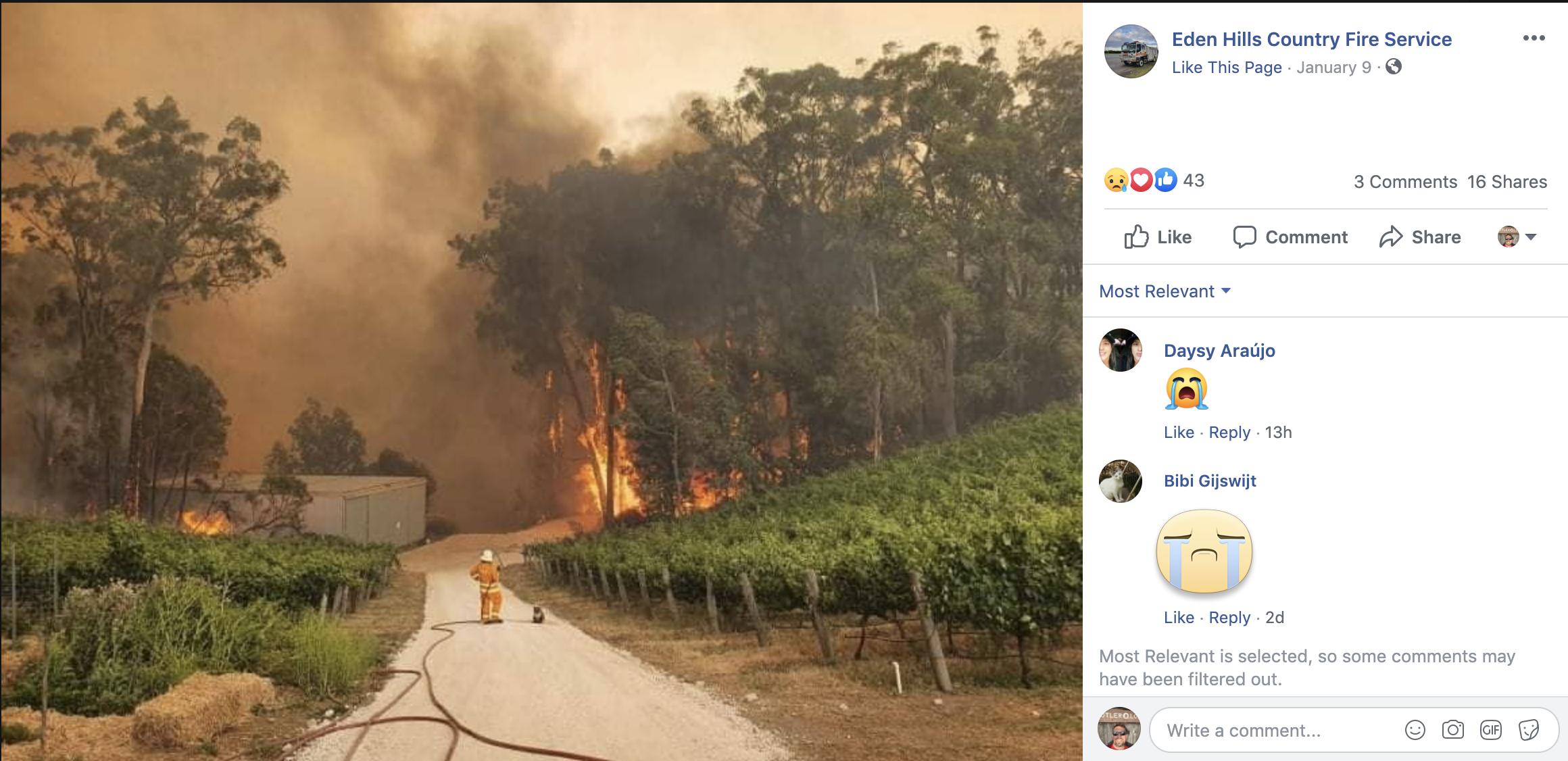 Firefighter and Koala in Australia