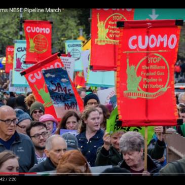 Williams Pipeline March